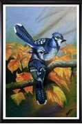 Shabih Artist Oil Painting SH-01