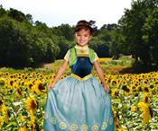 Buy Frozen Anna Costume  online